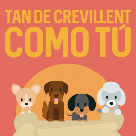 Campaña ADN canino